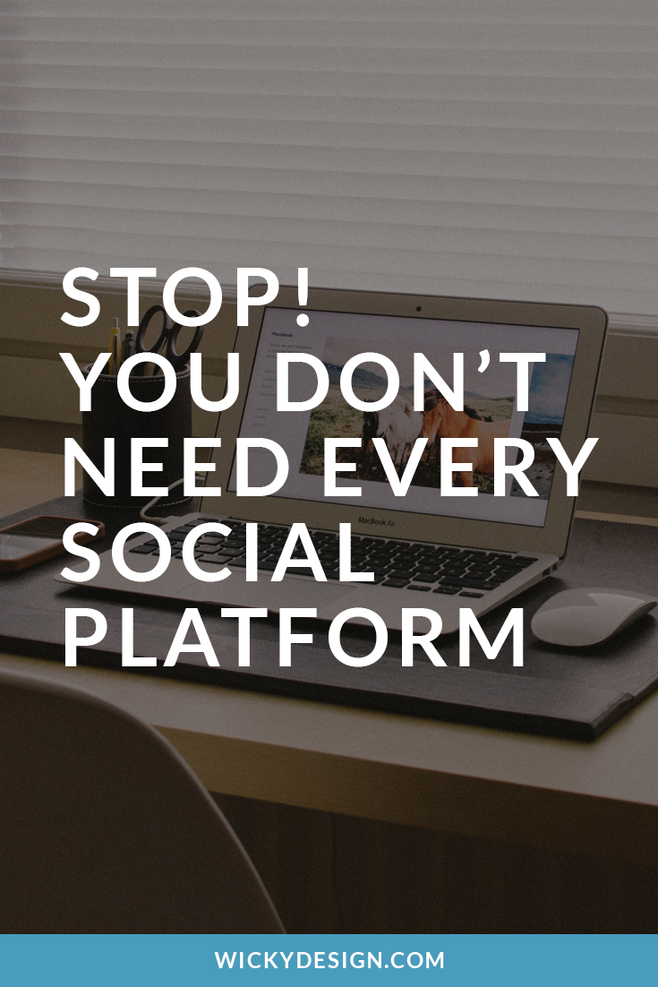 you-dont-need-every-sm-platform