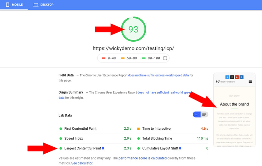 Google Page Speed Insights High Score